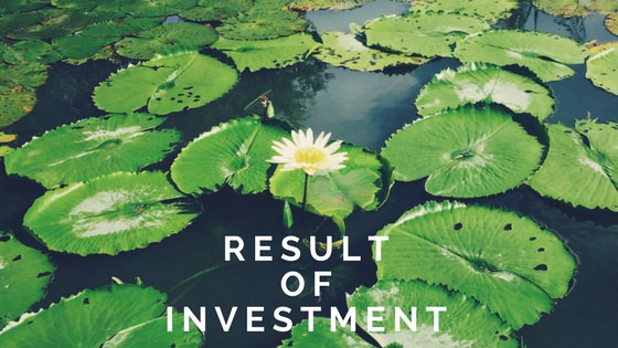 投資の結果