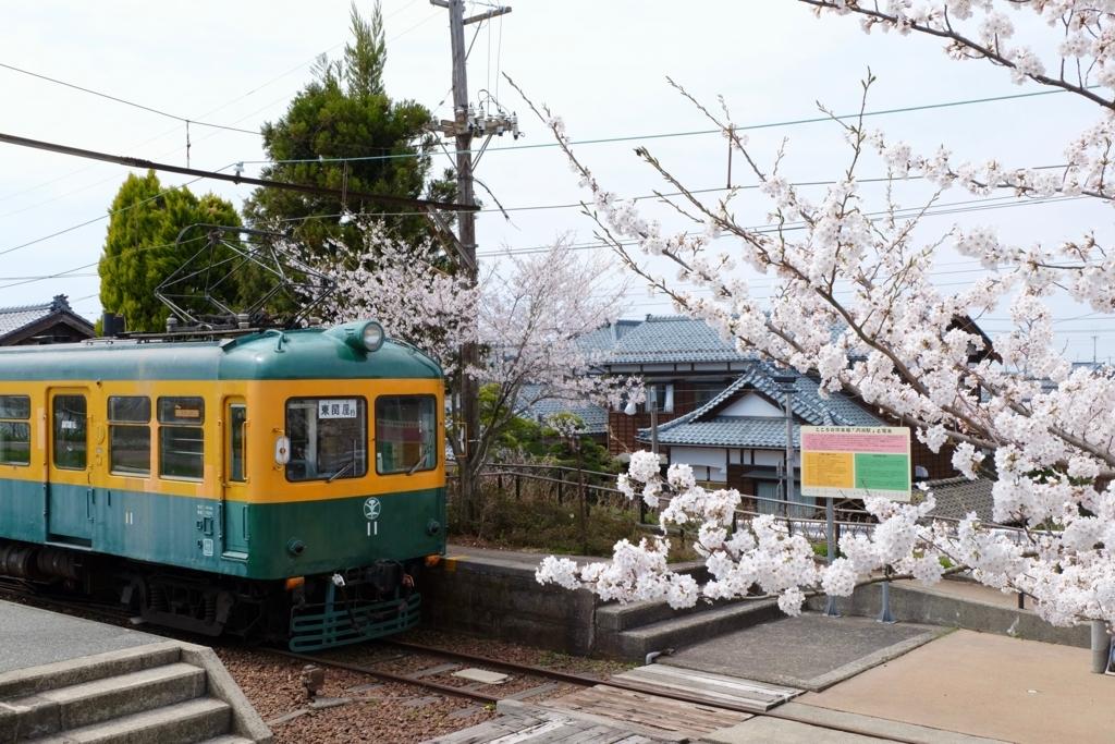 月潟駅の桜と電車
