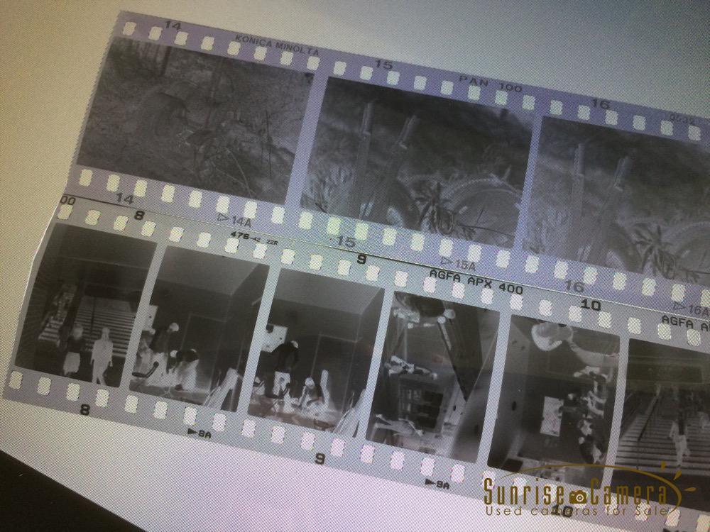 ハーフサイズ フィルム