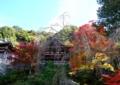 『京都新聞写真コンテスト 聖地の秋』
