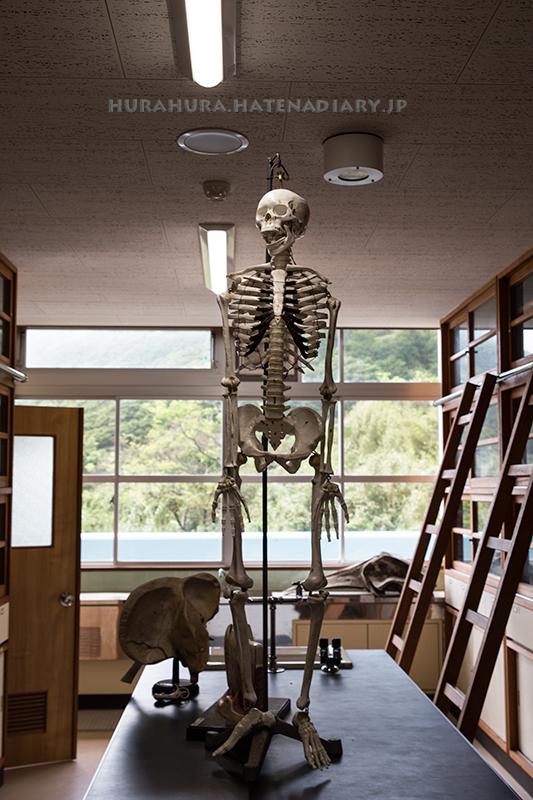 室戸廃校水族館理科室