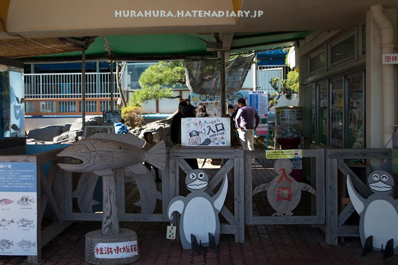桂浜水族館入り口