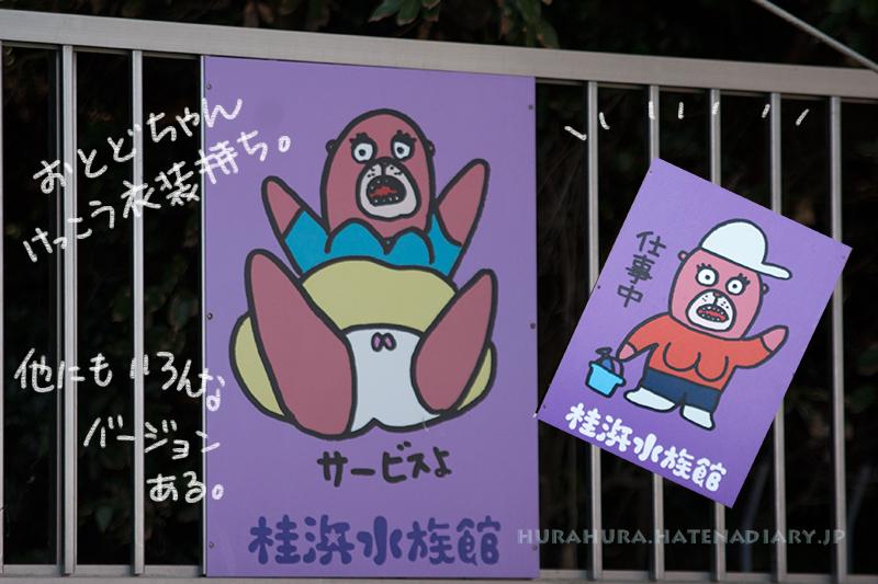 桂浜水族館おとどちゃん