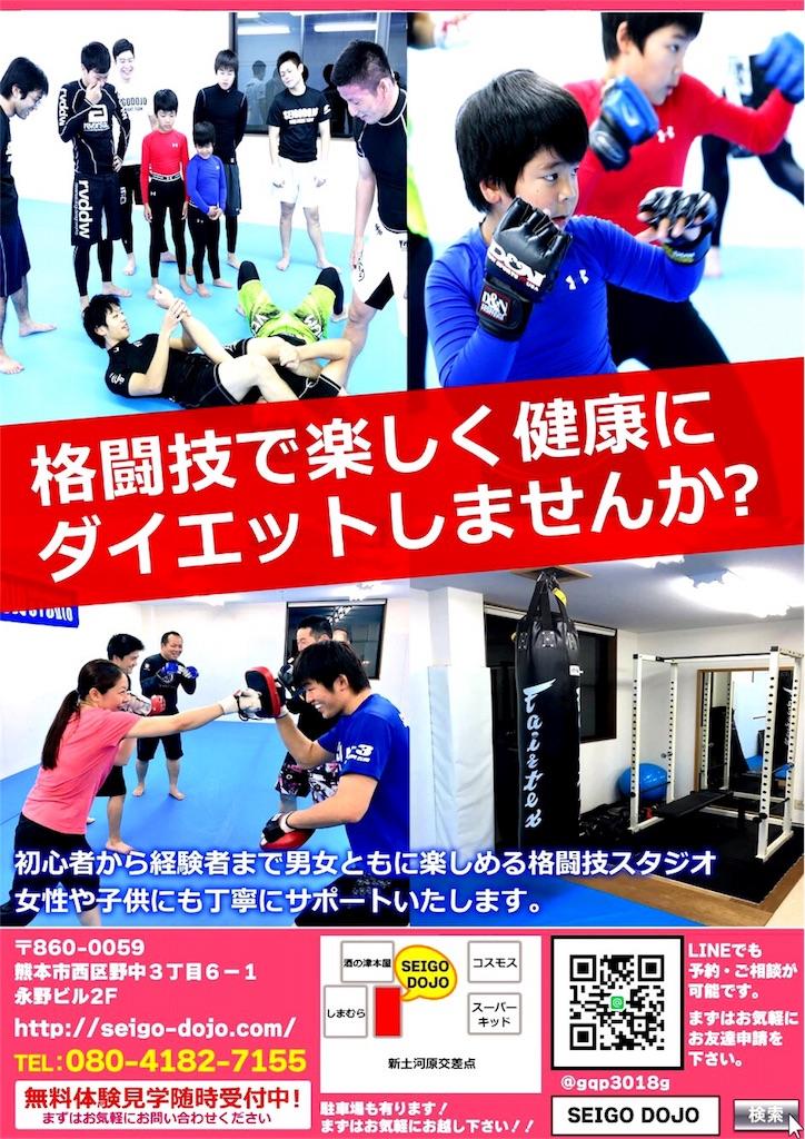 f:id:seigodojokumamoto:20161109011941j:image