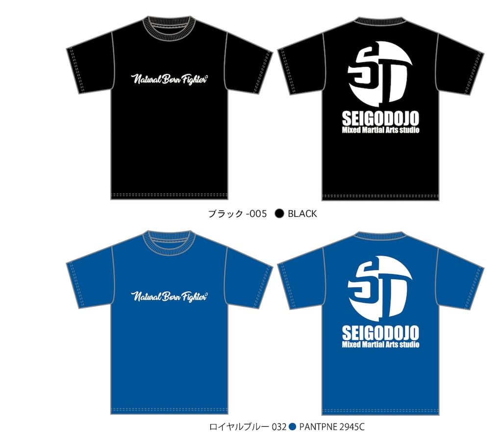 f:id:seigodojokumamoto:20171110145027j:image