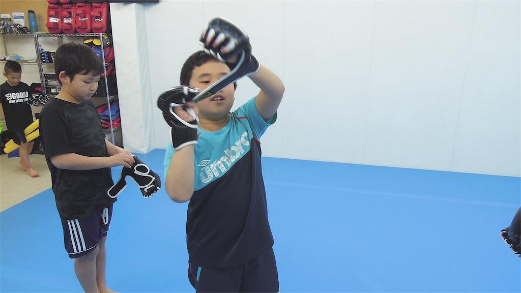 f:id:seigodojokumamoto:20180201122117j:image