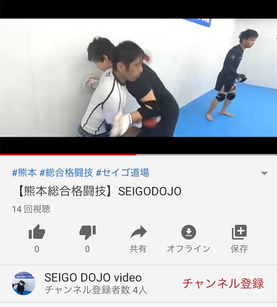 f:id:seigodojokumamoto:20200420172202j:image