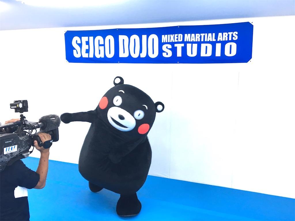 f:id:seigodojokumamoto:20201001092616j:image