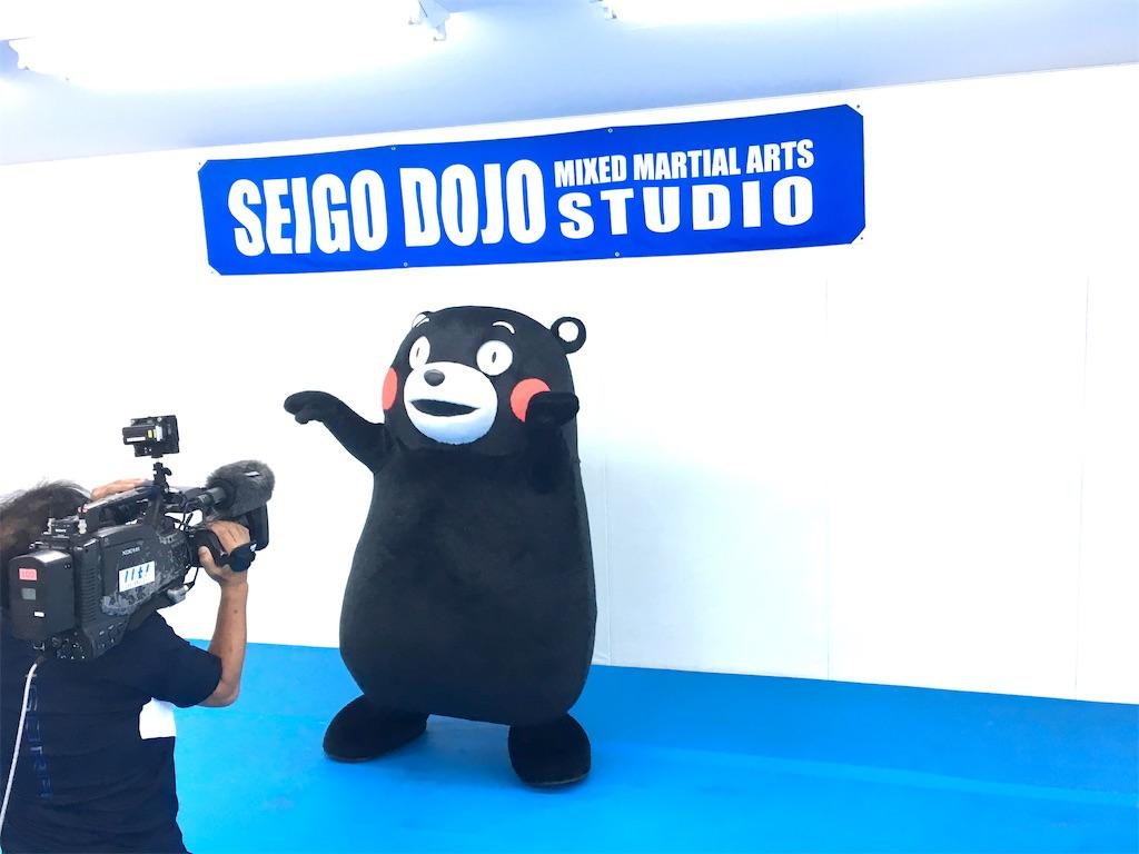 f:id:seigodojokumamoto:20210426053127j:image