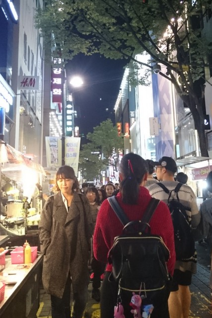 F:ID:seigoy:20161023211456j:平野