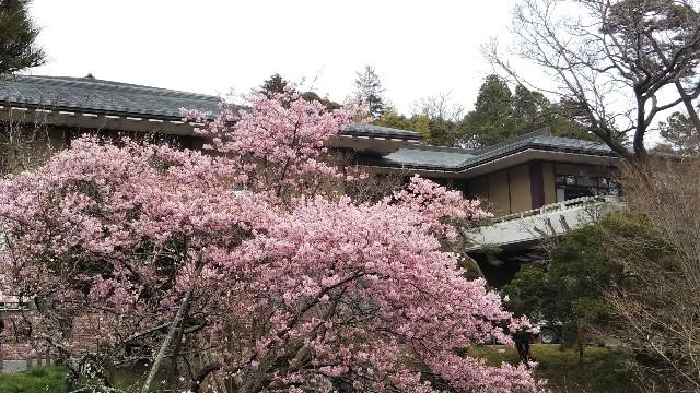 f:id:seihitukai-ebina:20190323195912j:image