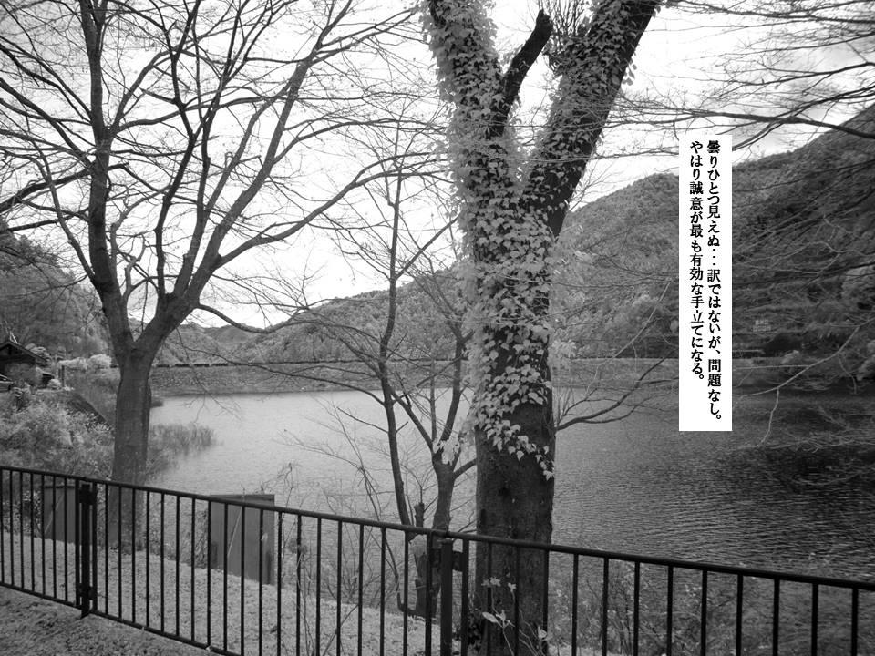 f:id:seiichiconan:20201215041720j:plain