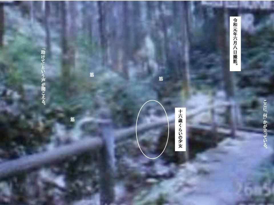 f:id:seiichiconan:20210801180844j:plain
