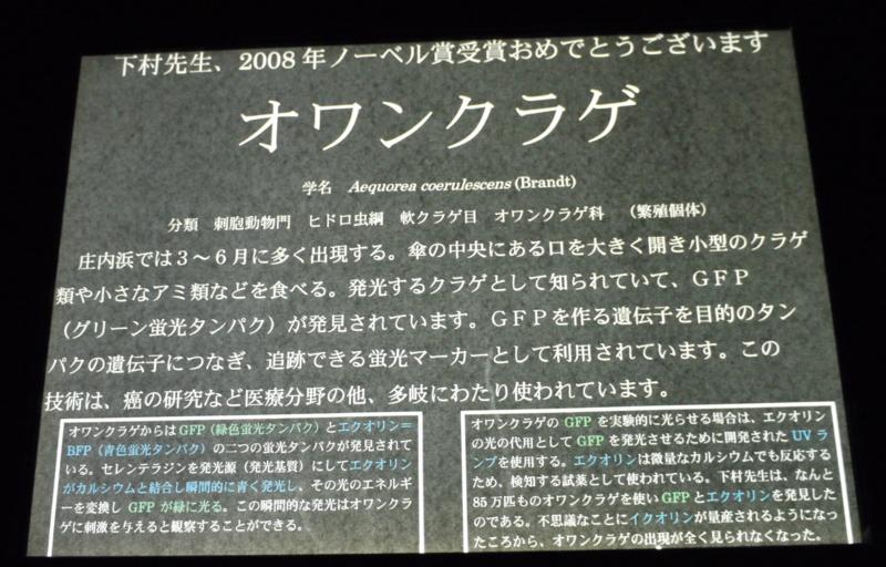 20090223161619
