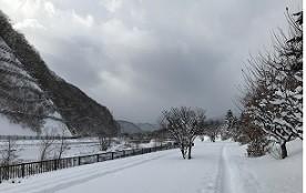 f:id:seiji-honjo:20210114101915j:plain