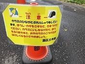 f:id:seiji-honjo:20210707092621j:plain