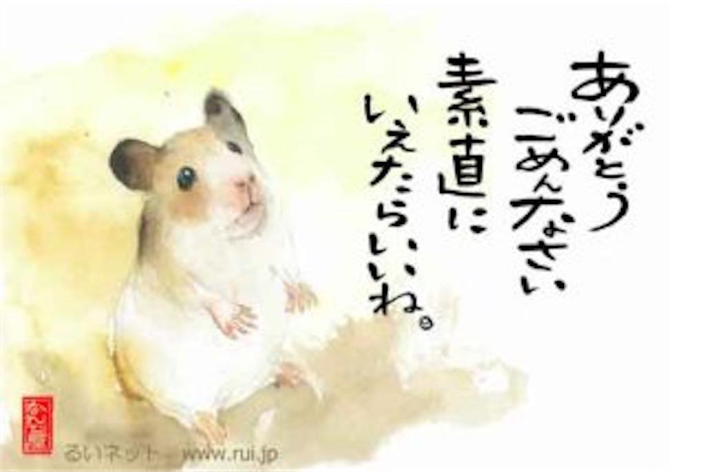 f:id:seijikawahara0304:20170806054346j:image