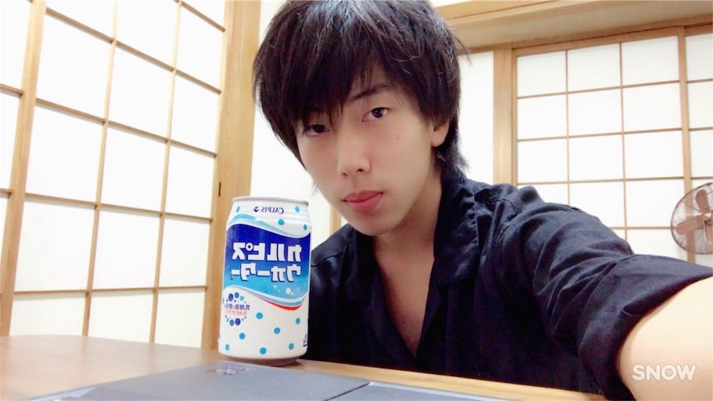 f:id:seijikawahara0304:20170812001542j:image