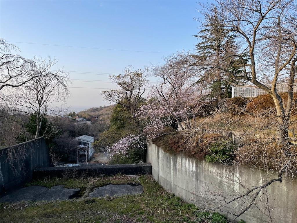 f:id:seikatsubijutsu:20210317194348j:image