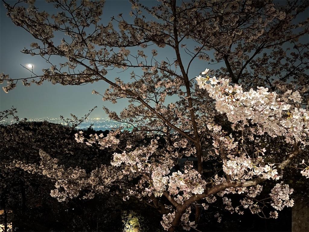 f:id:seikatsubijutsu:20210329195141j:image