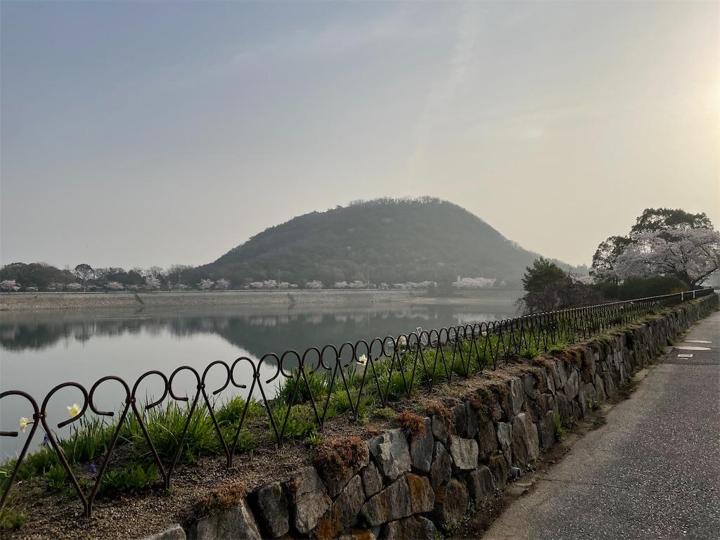 f:id:seikatsubijutsu:20210330211258j:image