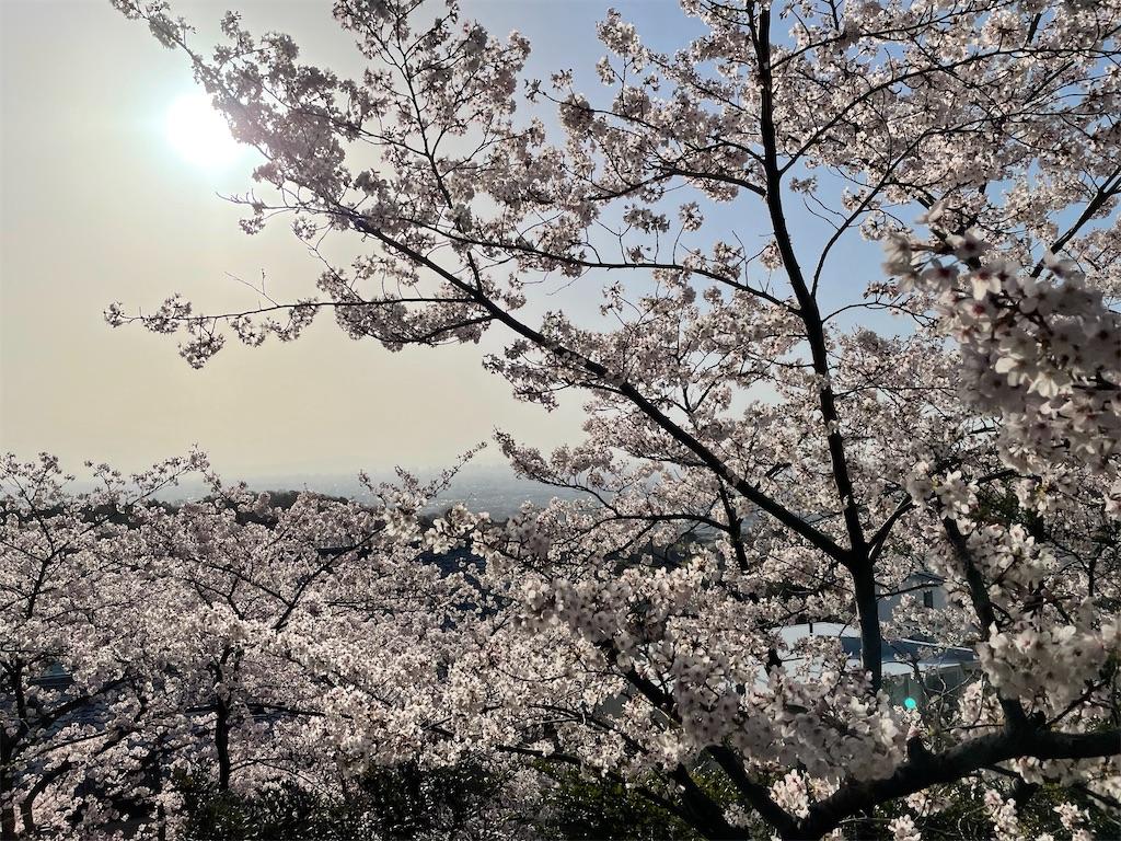 f:id:seikatsubijutsu:20210331215305j:image
