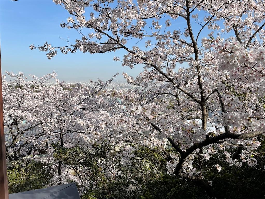 f:id:seikatsubijutsu:20210331215329j:image