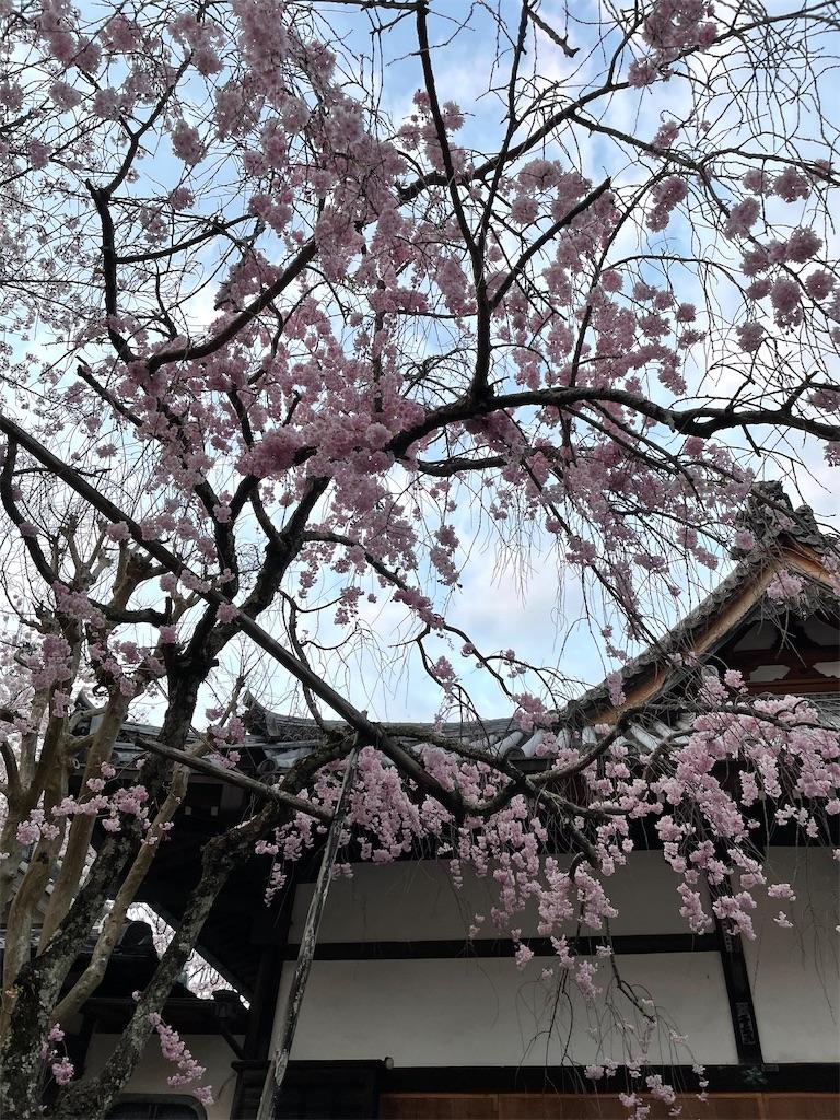 f:id:seikatsubijutsu:20210403220358j:image