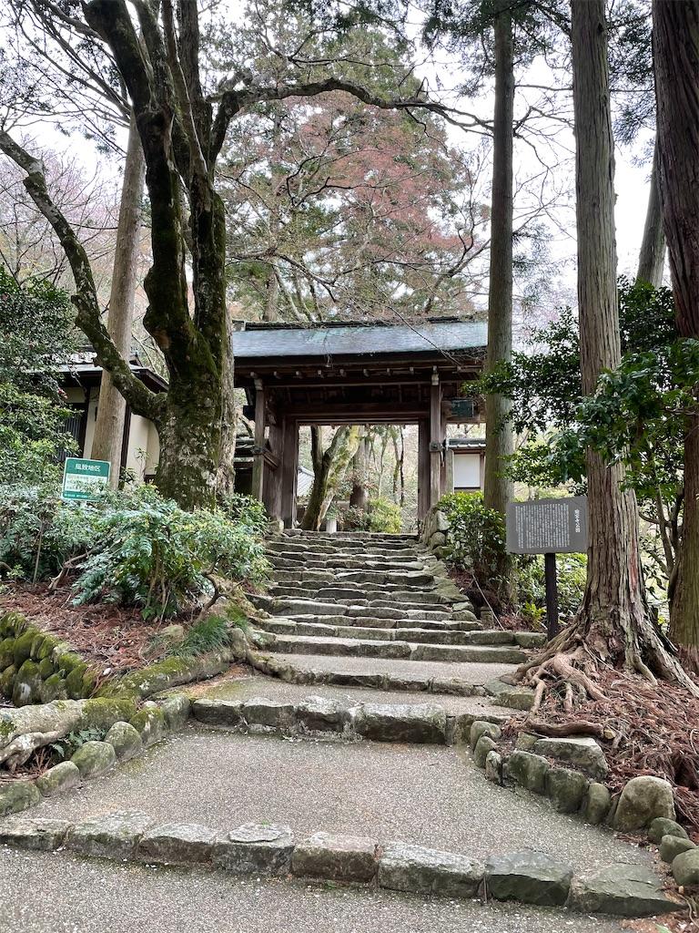 f:id:seikatsubijutsu:20210404223104j:image
