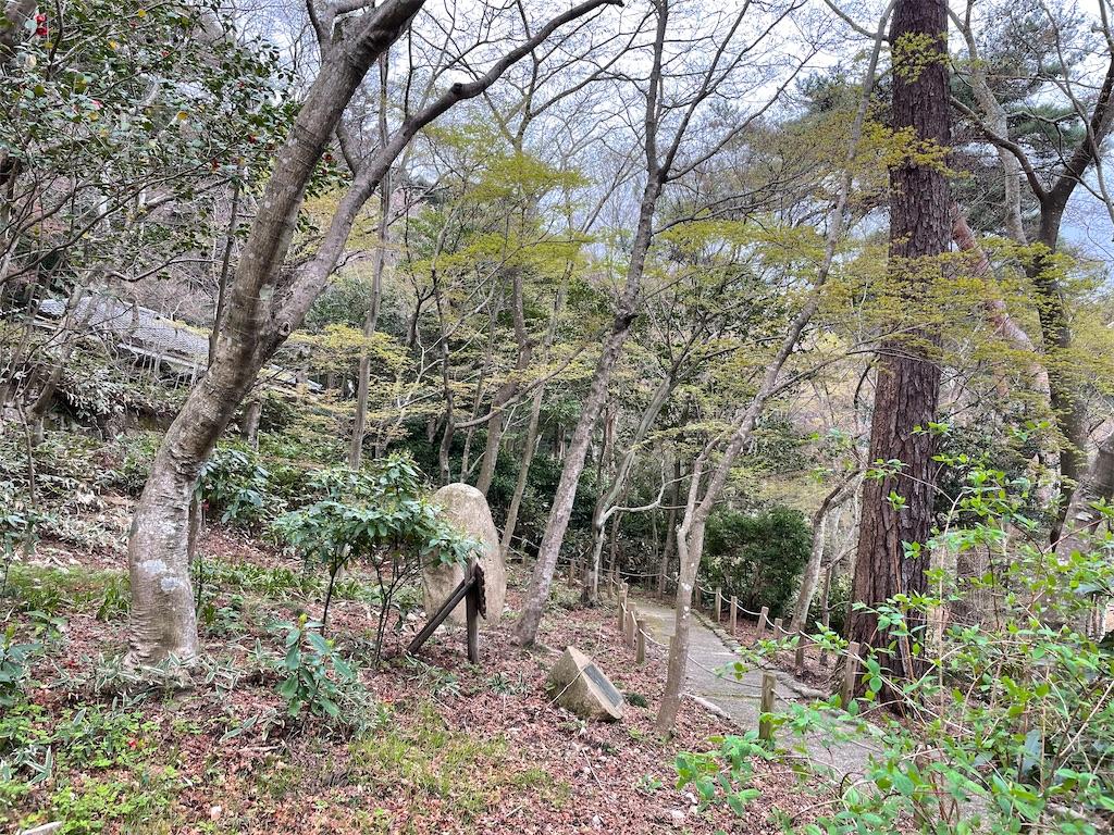 f:id:seikatsubijutsu:20210404223733j:image