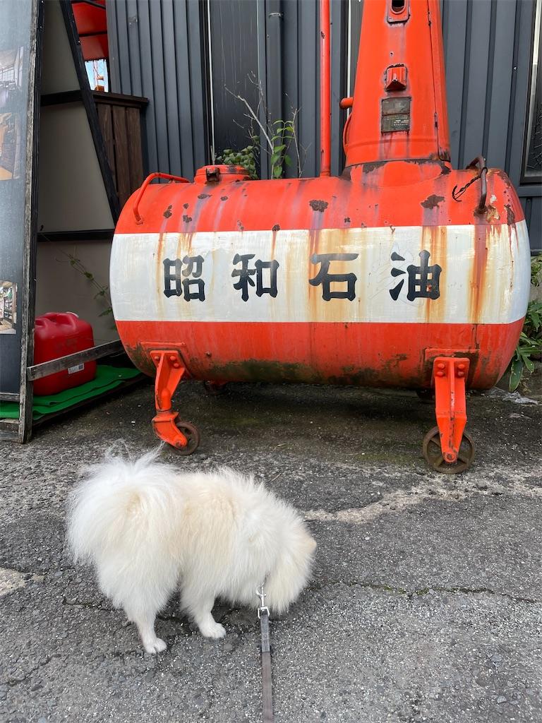 f:id:seikatsubijutsu:20210921011924j:image
