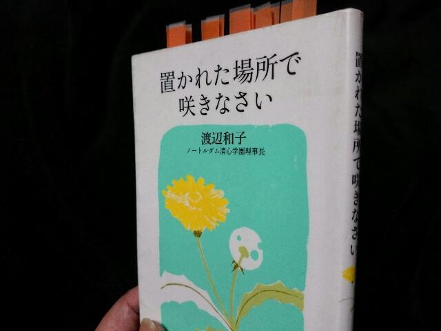 f:id:seikatsuhogo:20171207181944j:image