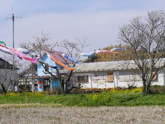 f:id:seikatsukojoiinkai:20180328223601j:image