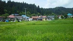 f:id:seikatsukougeiacademy:20170710092525j:plain
