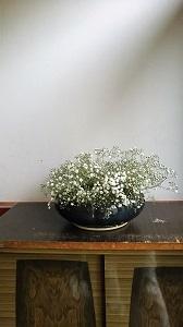 f:id:seikatsukougeiacademy:20170726224354j:plain