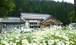 f:id:seikatsukougeiacademy:20170810084226j:plain