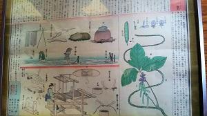 f:id:seikatsukougeiacademy:20170816203645j:plain