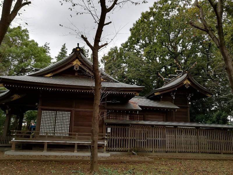 f:id:seiko_udoku:20201031134101j:plain