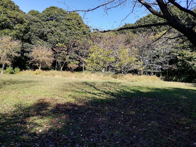 f:id:seiko_udoku:20201104155125j:plain