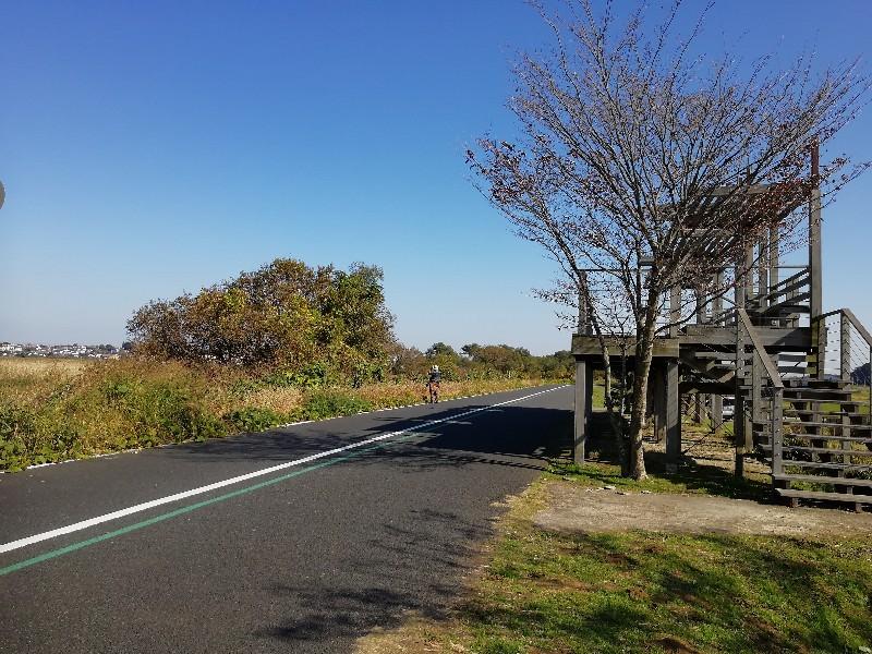 f:id:seiko_udoku:20201116224901j:plain