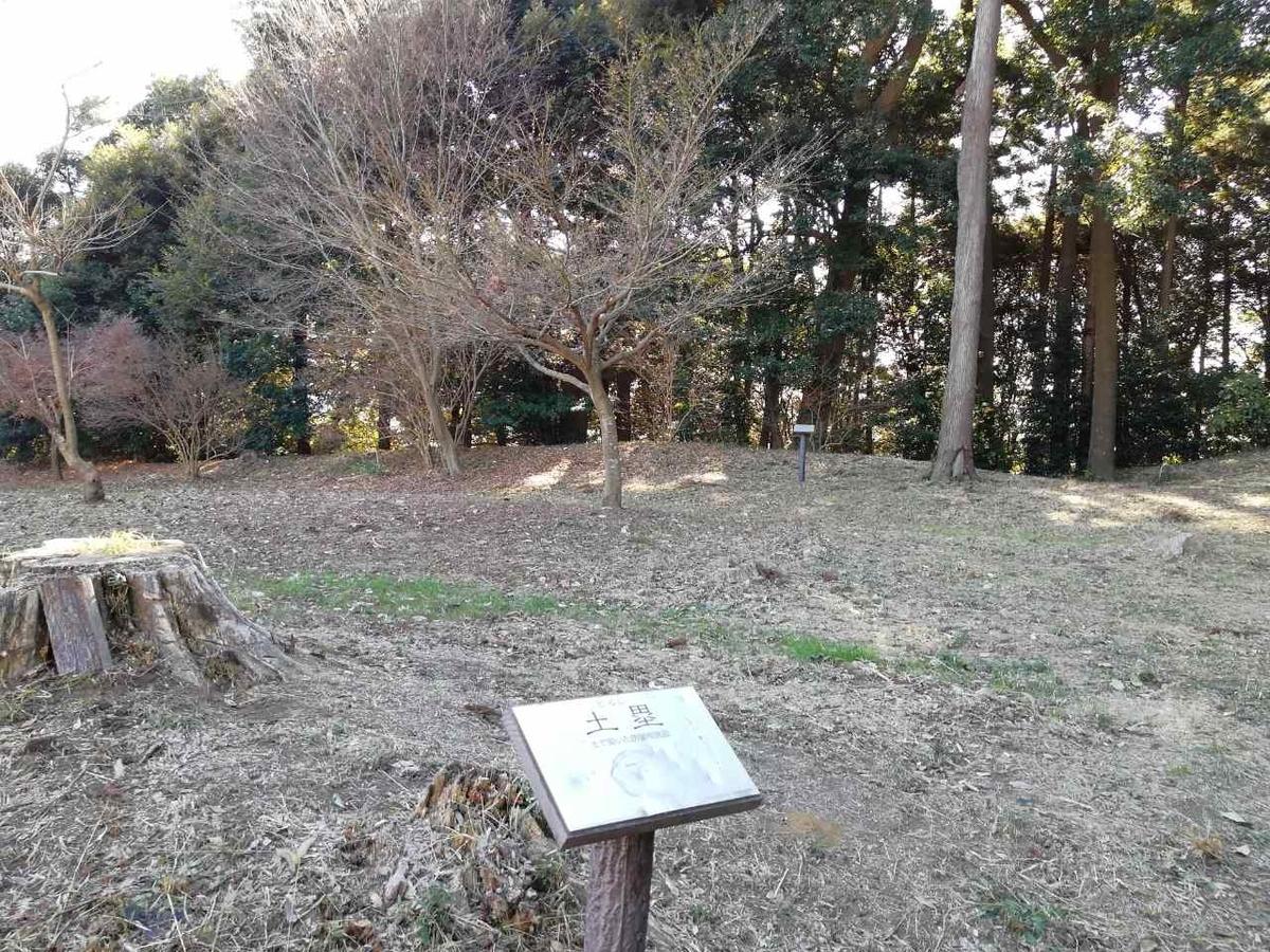 f:id:seiko_udoku:20201225122826j:plain