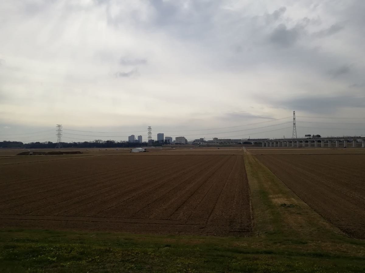 f:id:seiko_udoku:20210106103100j:plain