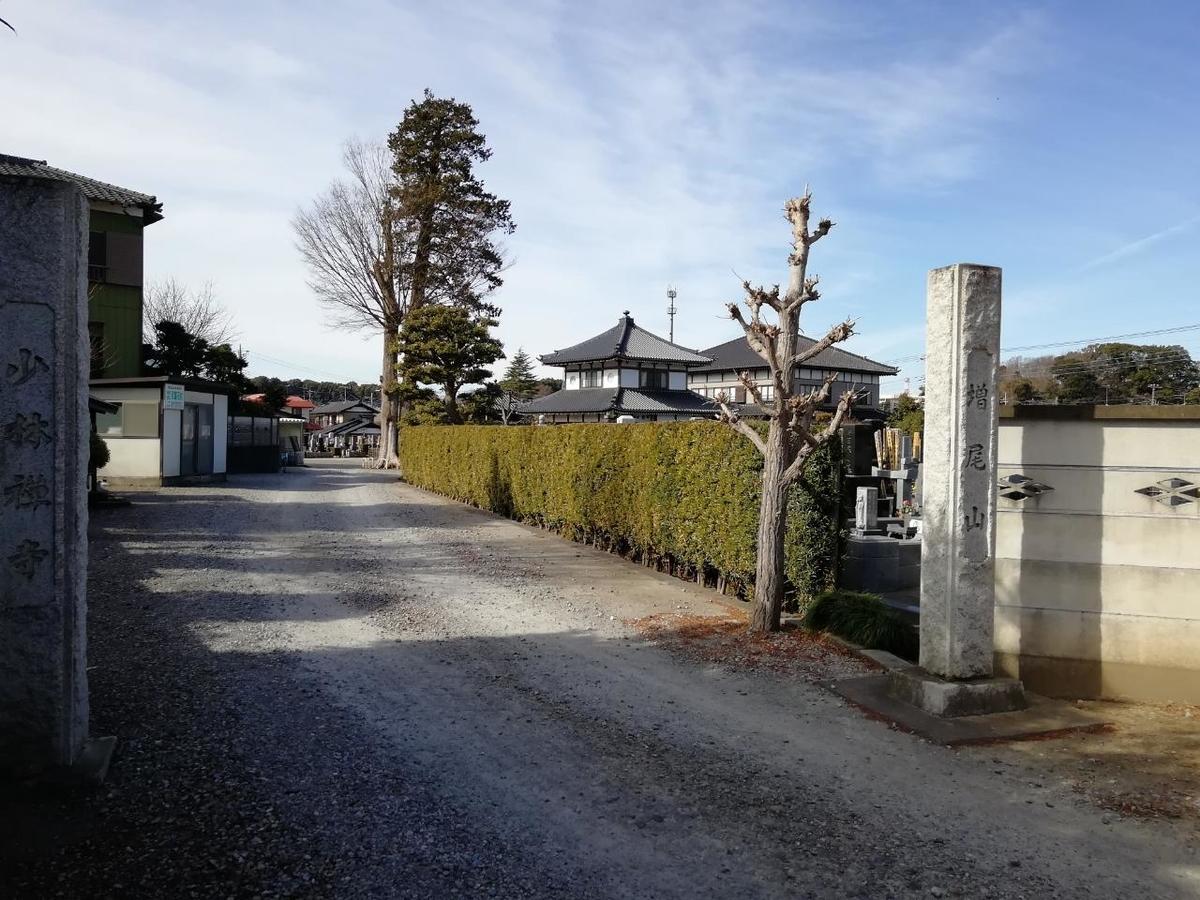 f:id:seiko_udoku:20210210194400j:plain