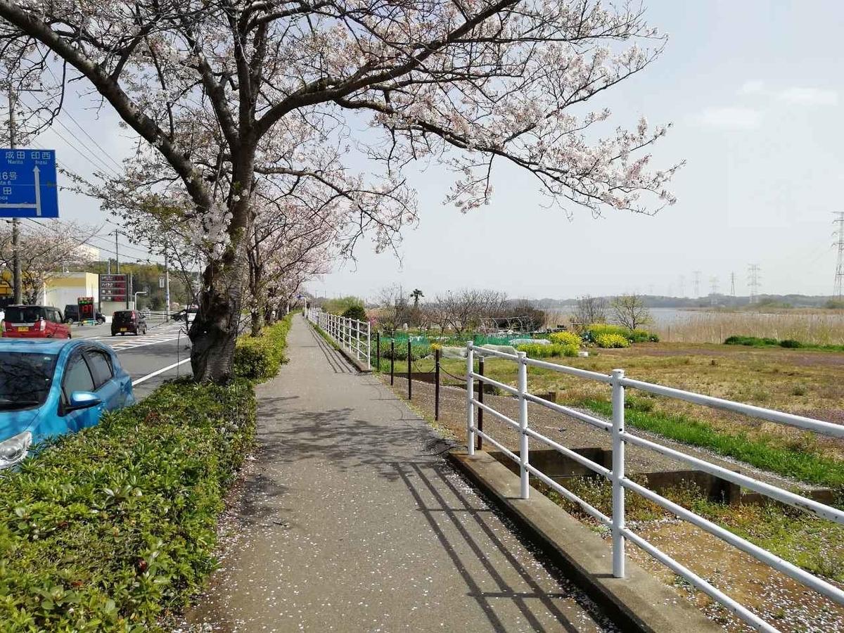 f:id:seiko_udoku:20210403100413j:plain