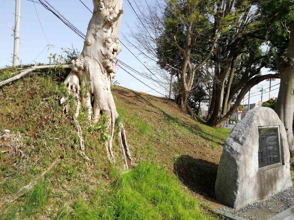 f:id:seiko_udoku:20210403153051j:plain