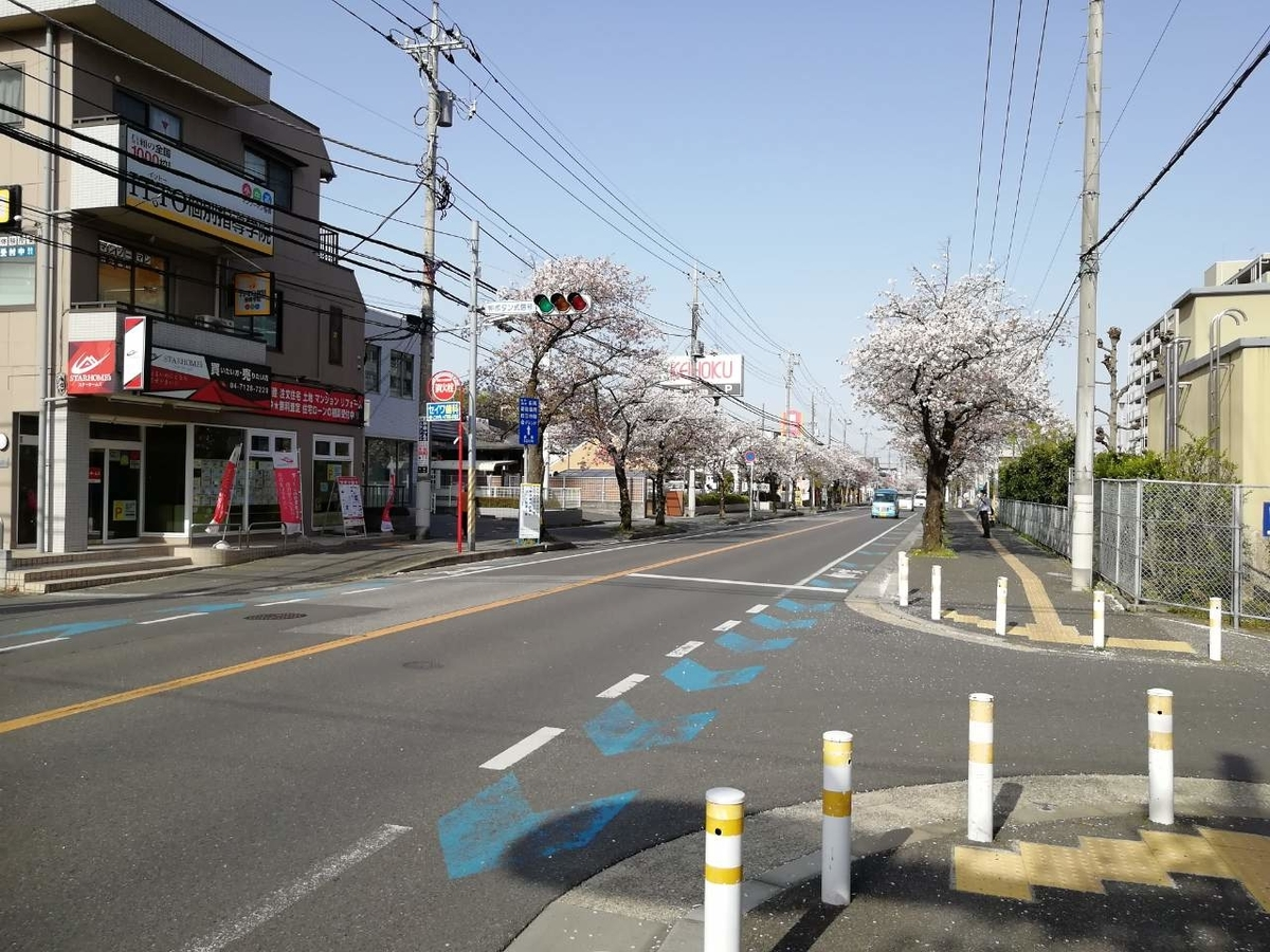 f:id:seiko_udoku:20210403154331j:plain