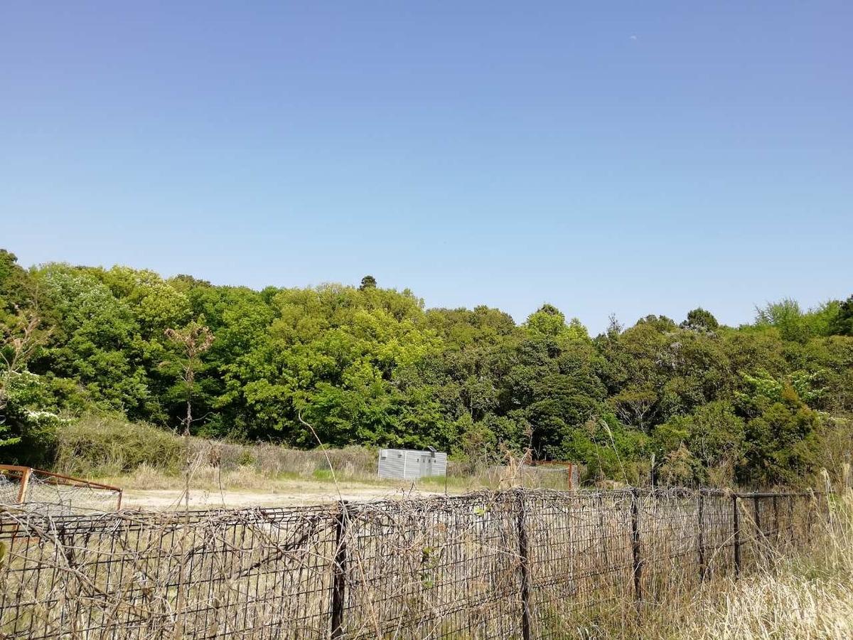 f:id:seiko_udoku:20210420155516j:plain