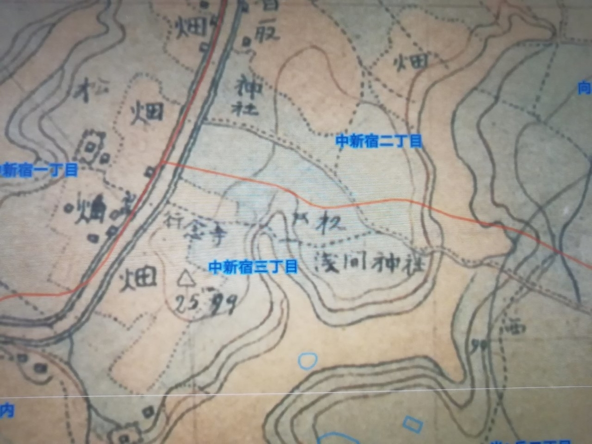 f:id:seiko_udoku:20210420182846j:plain