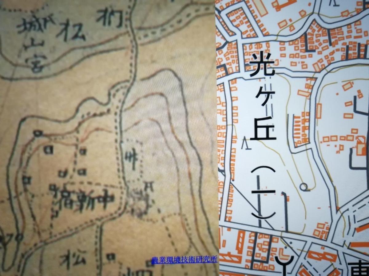f:id:seiko_udoku:20210513173113j:plain