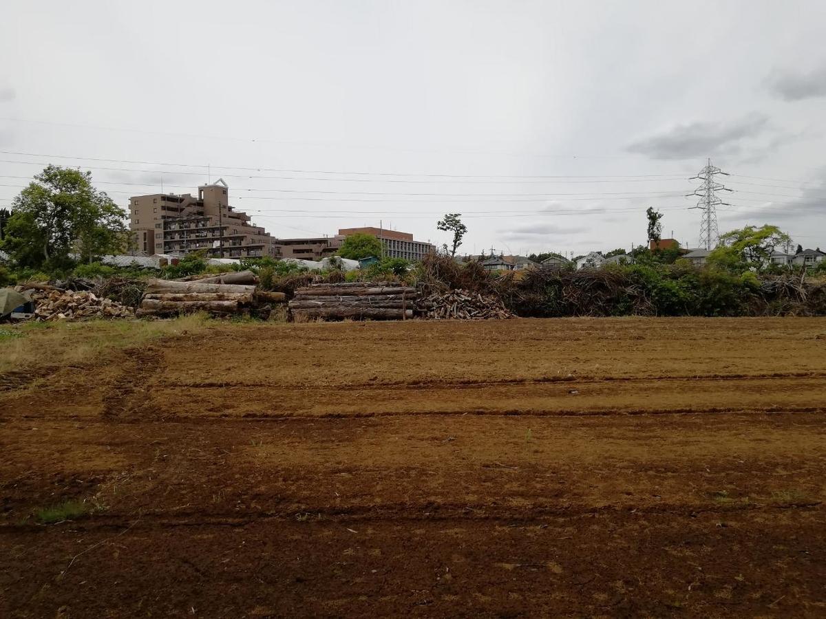 f:id:seiko_udoku:20210513173548j:plain